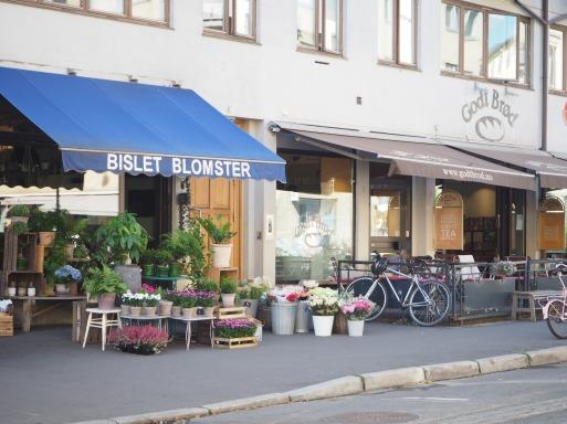 neighborhood of Bislet