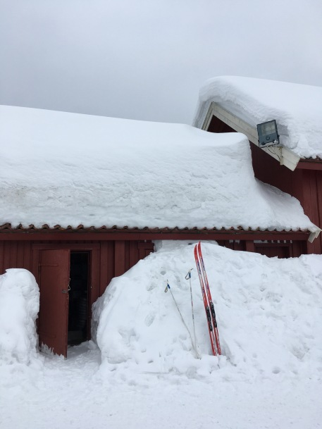 and more snow on the roof!
