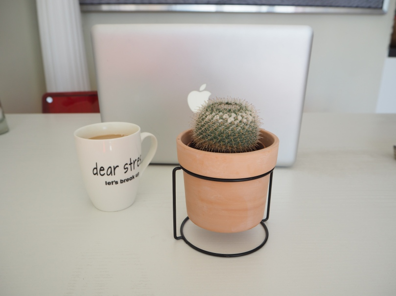 cactus and coffee