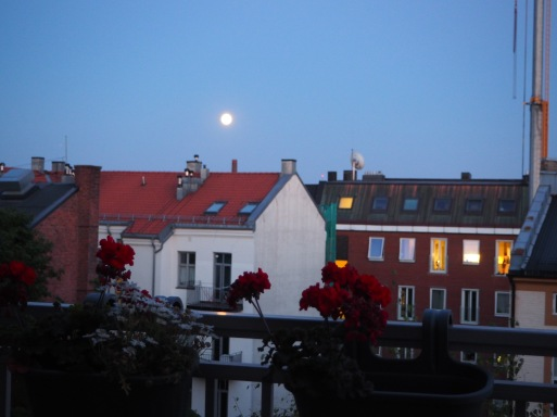 red roofs and full moon