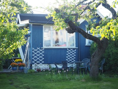 in the shade of blue house