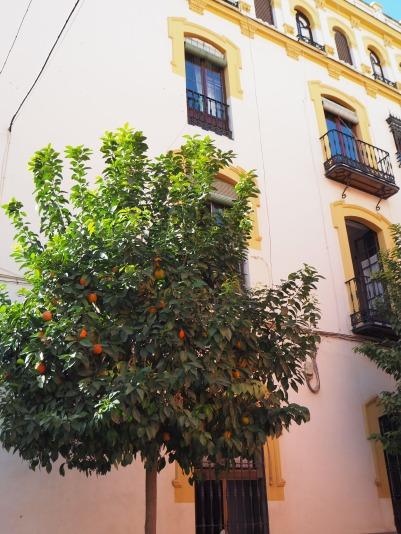 sunny house in Sevilla