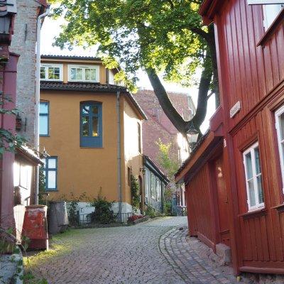 a village inside the city